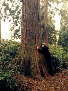 RedwoodStuttgart